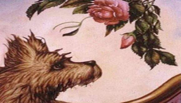 ¿Flores, perro o mujer? Este test revela detalles de tu personalidad