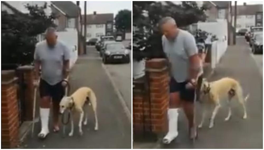 Hombre creía que su perro estaba cojo pero descubrió que lo imitaba por compasión